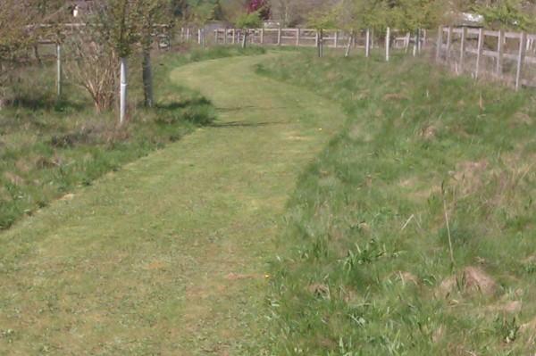 England Woodland Grant Scheme - Tree Parts